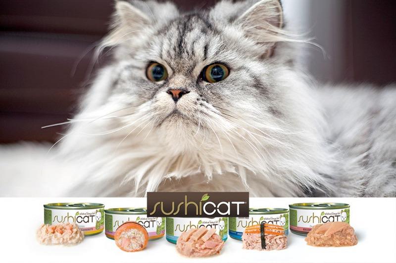 Il gatto mangia giapponese